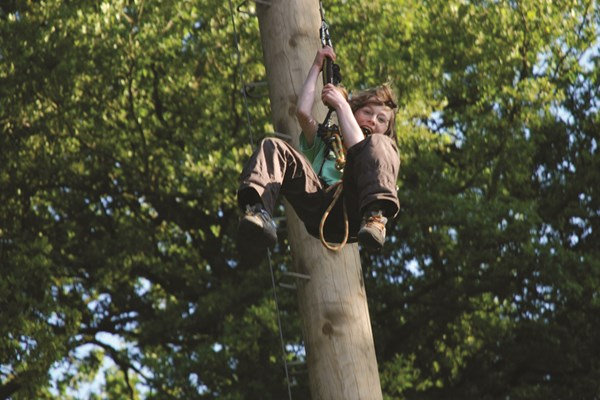 Adult High Ropes Adventure  Norfolk