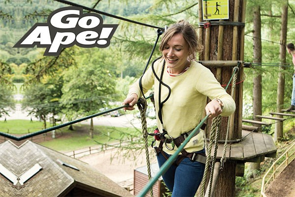 Tree Top Challenge For One Adult At Go Ape