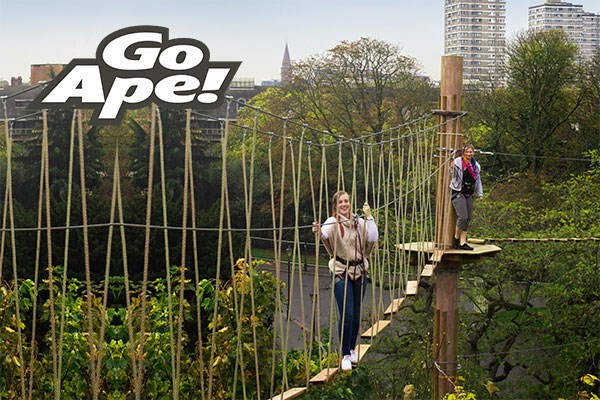 Tree Top Challenge For Two Adults At Go Ape