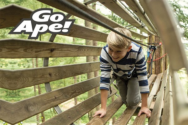 Junior Tree Top Adventure For Two At Go Ape