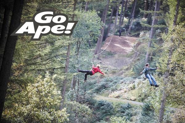 Zip Trek For Two At Treetop Trek