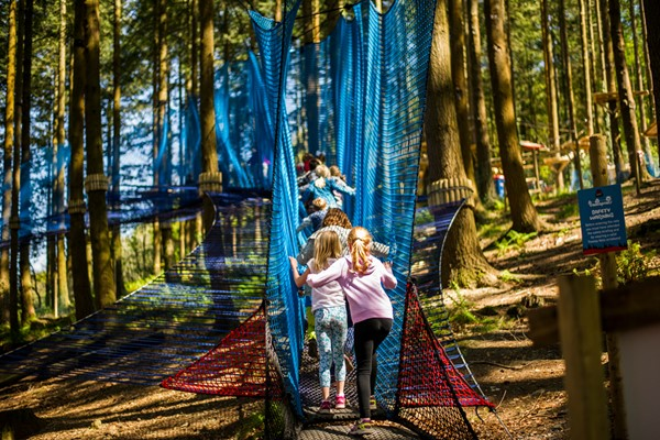 Treetop Nets Adventure For One Adult