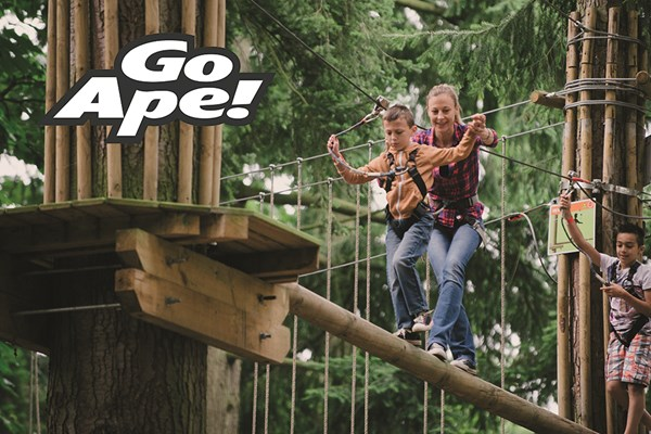 Click to view product details and reviews for Tree Top Adventure In London For One Adult And One Child.