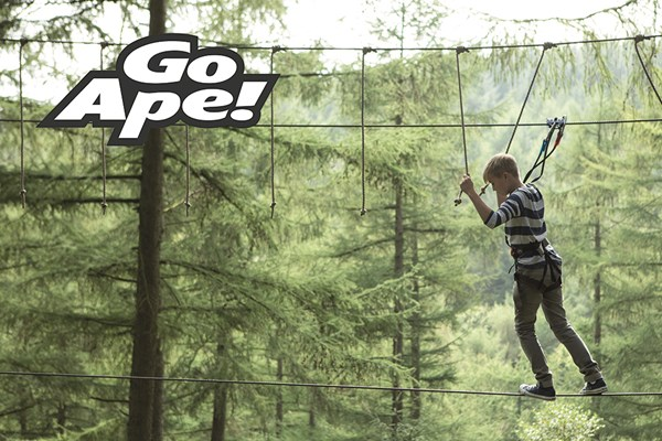 Tree Top Adventure In London For One Adult And One Child