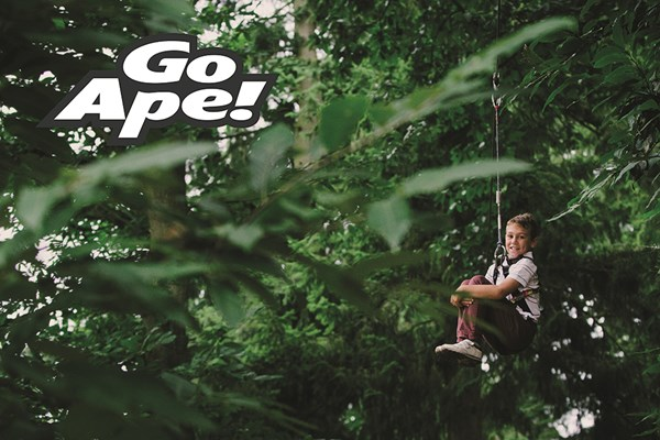 Click to view product details and reviews for Junior Tree Top Adventure In London For One Child.