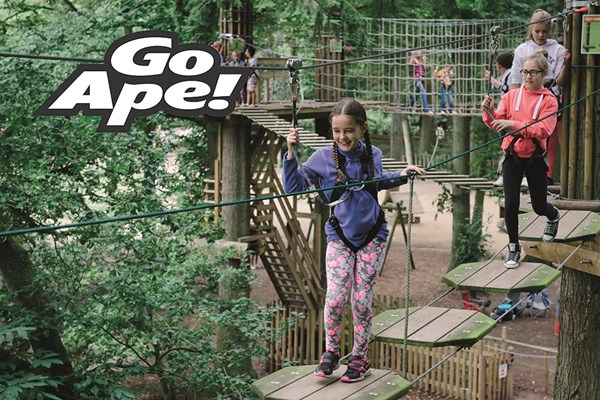 Junior Tree Top Adventure In London For Two Children