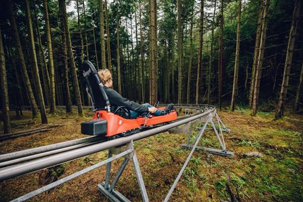 Zip World Fforest Coaster Ride Experience