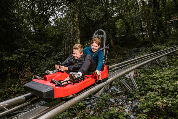Zip World Fforest Coaster Shared Sled Ride Adult And Child