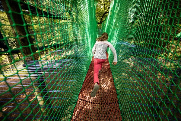 Click to view product details and reviews for Treetop Nets For Two At Treetop Trek.