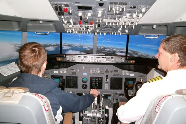 30 Minute Flight Simulator Experience