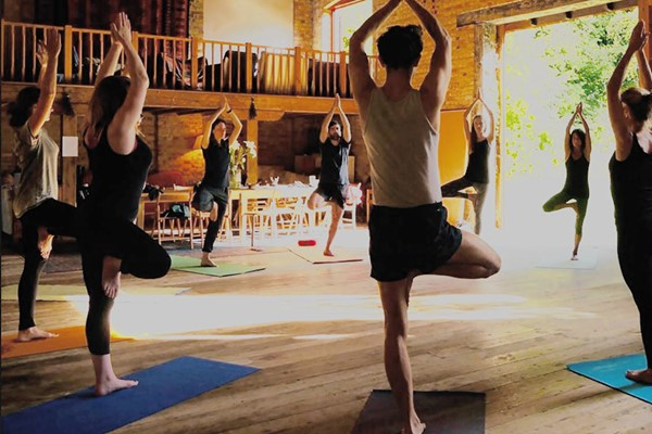One Day Yoga Retreat For Two At Yoga Tree Of Life