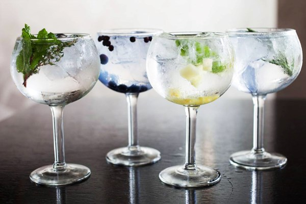 Buy Gin Tasting Experience for Two at Jenever Gin Bar