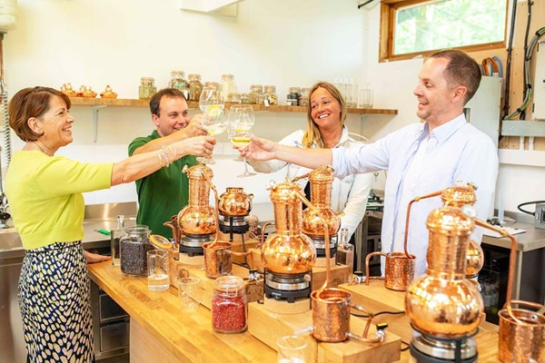 Buy Gin Masterclass for Two at the Devon Distillery