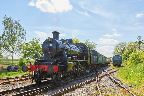 Family Steam Railway Day Rover Ticket On The East Somerset Railway