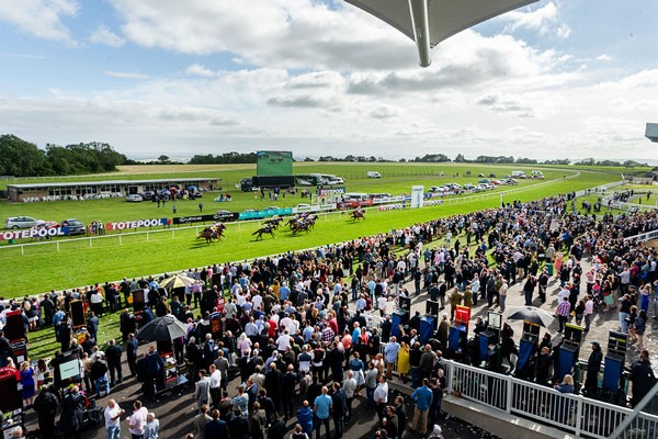 Lingfield Raceday And Three Course Meal With Wine For Two At Prezo