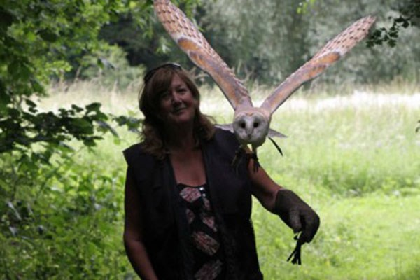 2 For 1 Woodland Walk And Owl Flying Experience At Lee Valley Park
