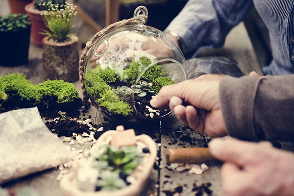 Family Terrarium Workshop At Portos Flowers