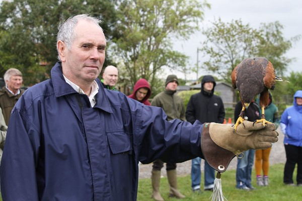 Bird Of Prey Falconry Experience For Two