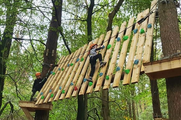 Tree Top Trials Entry To Explorer Course For One Adult And One Child