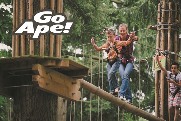 Click to view product details and reviews for Tree Top Adventure For One Adult And One Child At Go Ape.
