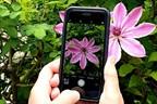 Smartphone Home Photography Challenge with Simon Warren Photography
